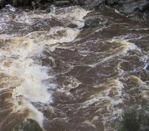 Cataract Gorge in Flood