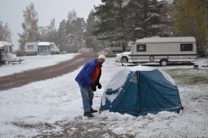 A fool camping in Spring - in Sweden